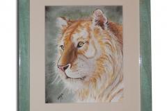 Varga Szilárd: Arany tigris (fakeretben) mérete kerettel: 24,5 cm / 28 cm ára: 18.000 Ft