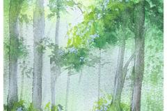 Varga Szilárd: zölderdő (keret nélkül 14cm/19cm) 15.000 Ft